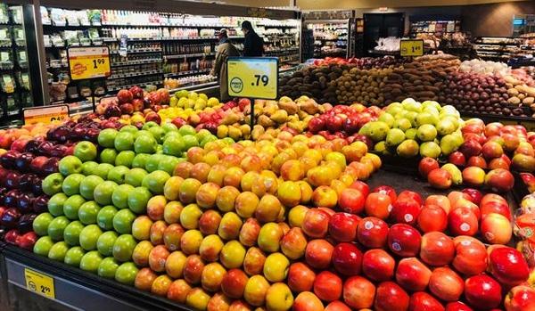 开封食品超市灭鼠杀虫解决方案